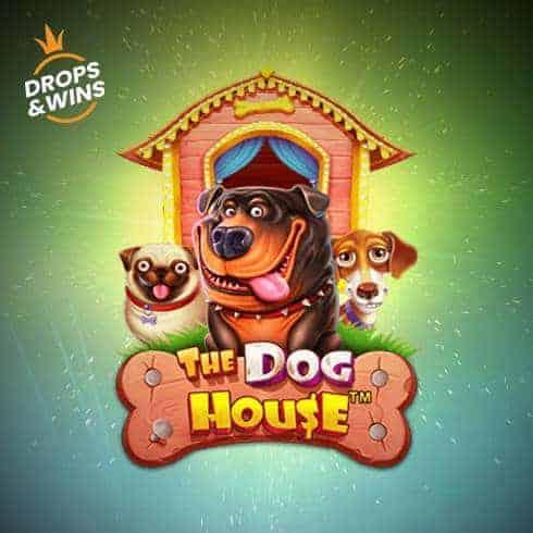 Păcănele gratis The Dog House