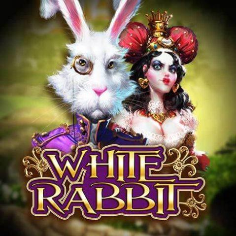 Jocul de păcănele White Rabbit