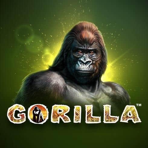 Păcănele Novomatic Gorilla