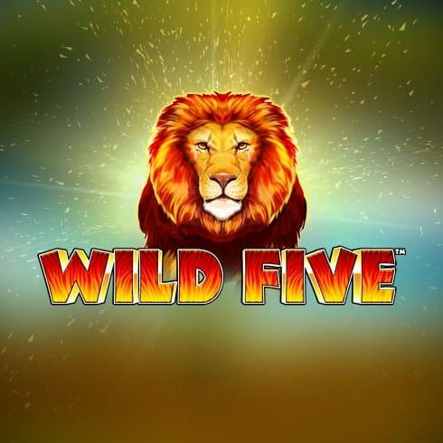 Păcănele Skywind Wild Five