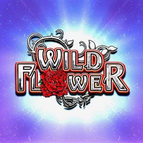 Jocuri ca la aparate Wild Flower